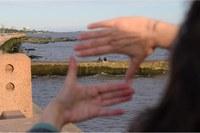 Projeto de cooperação técnica Brasil-Uruguai contribui para o desenvolvimento de cidadania digital