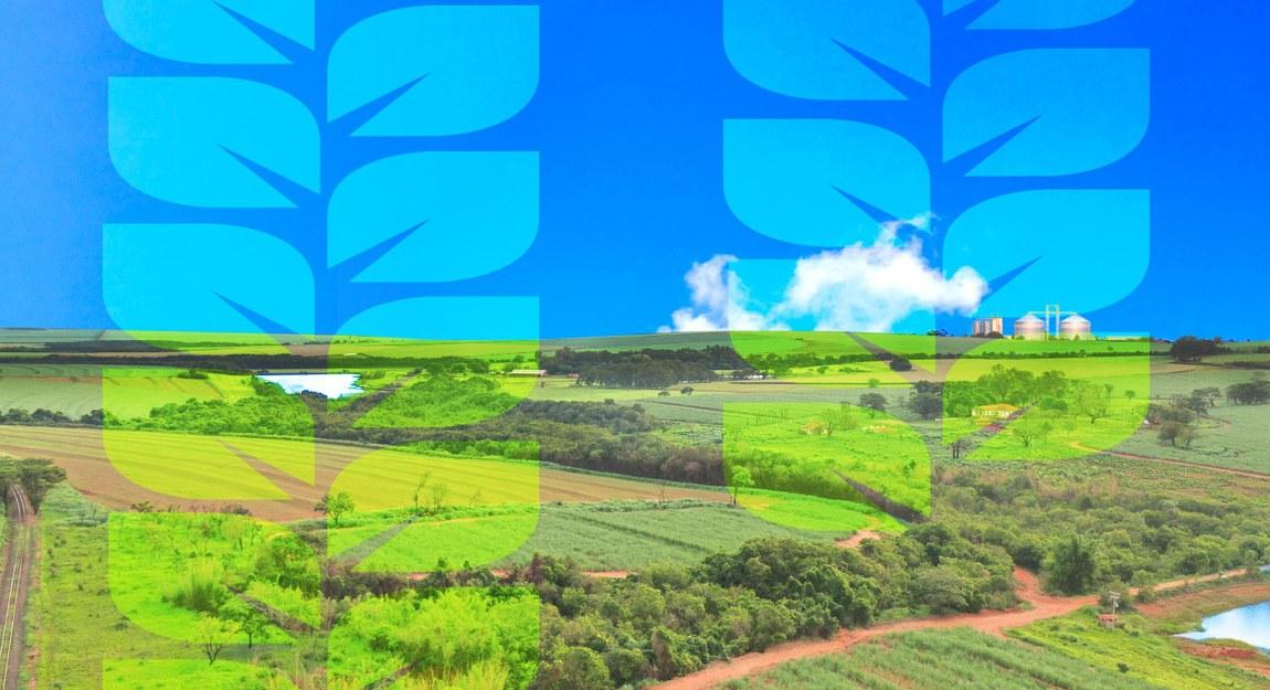 Com total de R$ 251,2 bilhões, Plano Safra 21/22 aumenta recursos para técnicas agrícolas sustentáveis