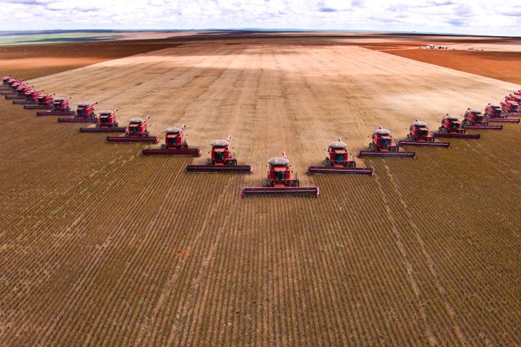 Zoneamento Agrícola de Risco Climático