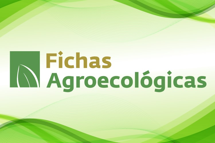 Fichas Agroecológicas