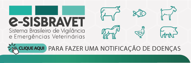 banner e-sisbravet.png