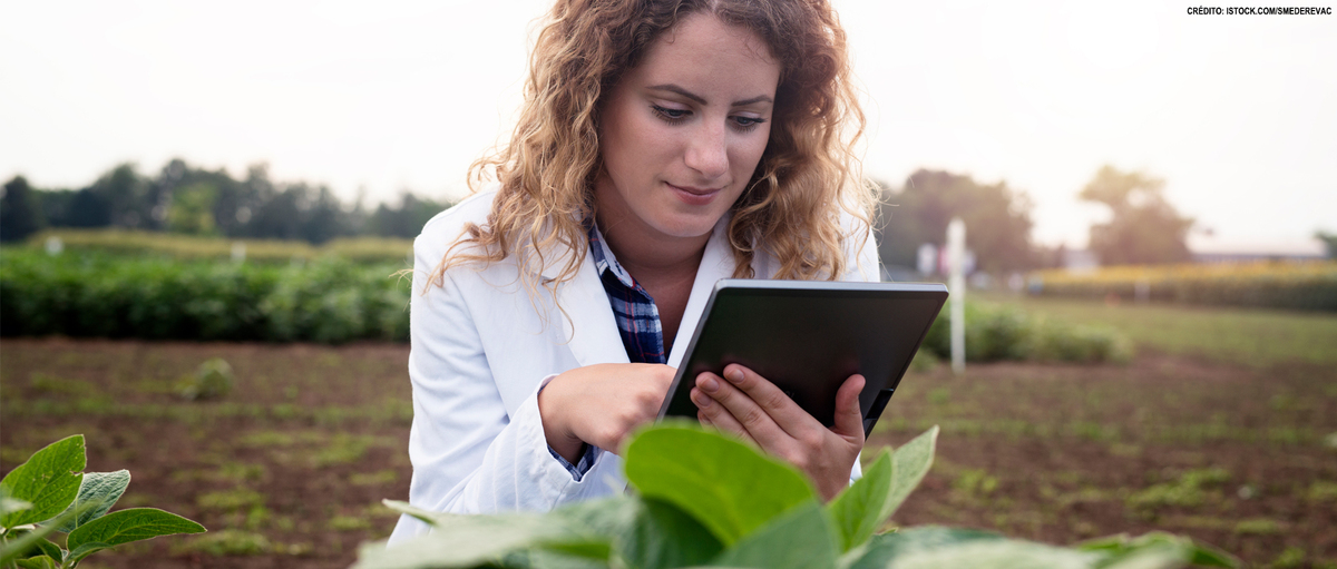 Doutorado em Agricultura nos EUA: inscrições vão até 5/11