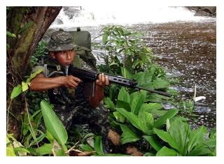 https://defesa.gov.br/arquivos/imagens_2011/mes07/selva.jpg