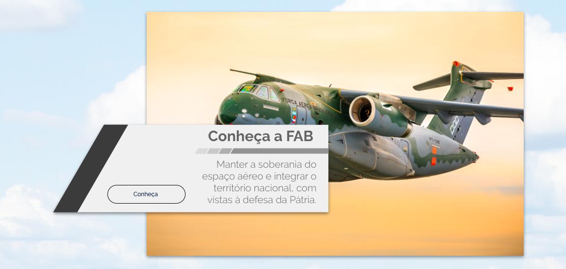 Conheça a Força Aérea Brasileira