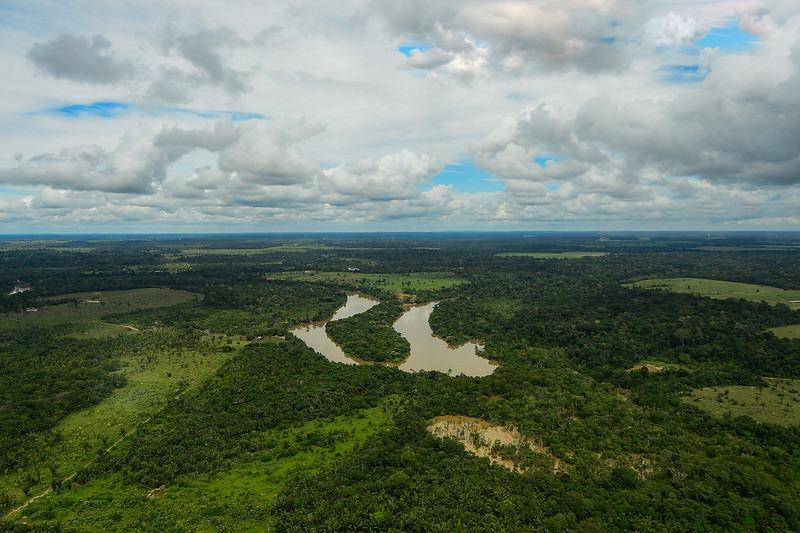 20200605_verde-brasil-03.jpg