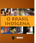 ibge-brasil-indigena