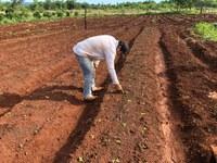 Iniciativa partiu da Coordenação Regional da Funai localizada em Campo Grande (MS). Foto: Divulgação