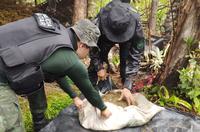Servidores da Funai e policiais militares do Maranhão durante fiscalização em Terras Indígenas no estado [foto: FPEA Awá]