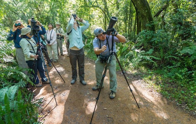 Documento informa aos interessados as especificações básicas para apoiar observadores de aves