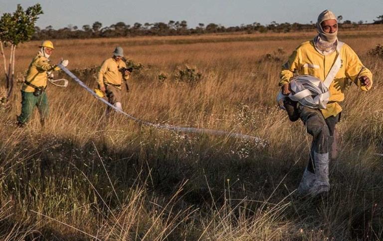 Ações de prevenção de incêndio protegem parques nacionais do Cerrado