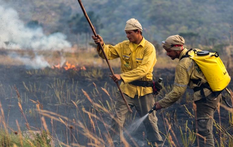 Brigadistas atuarão no combate a incêndios florestais em unidades de conservação