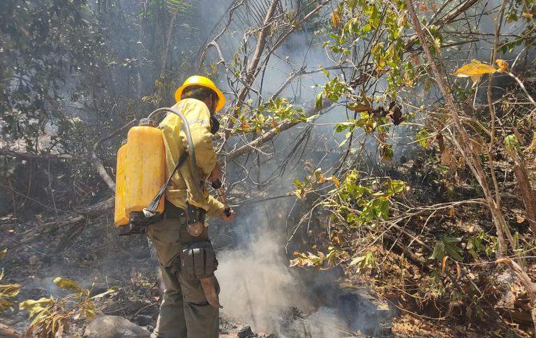 Governo Federal reúne esforços para conter as chamas na região