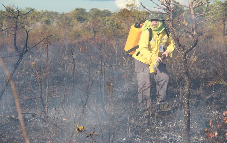 Parque Nacional de Brasília tem nova queima controlada nesta 2ª feira