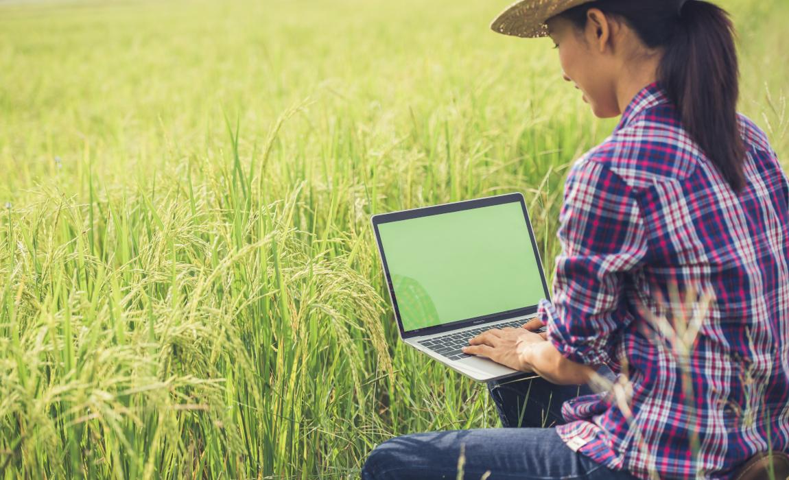 Governo investe em soluções digitais para a gestão fundiária do país