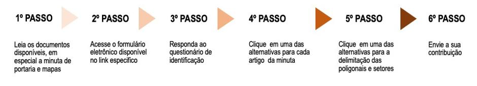 2021_Depam_ConsultaPública_PassoAPasso