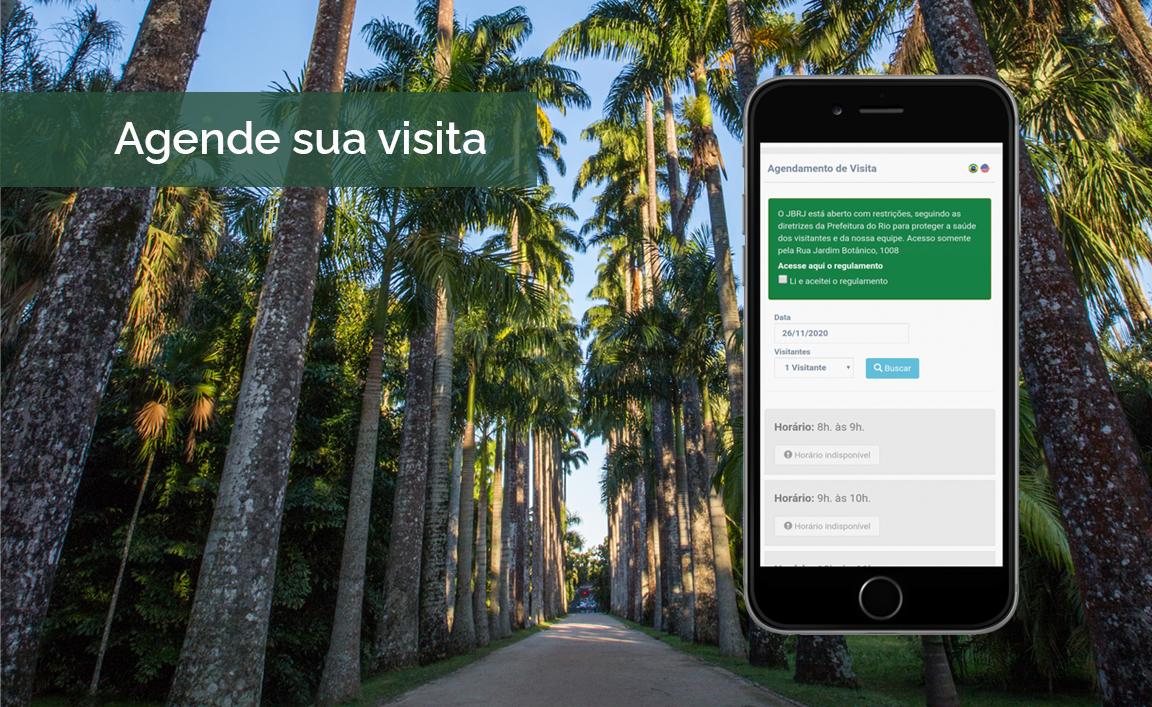Saiba como agendar sua visita ao Jardim Botânico do Rio de Janeiro