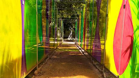 Jardim Botânico expõe a instalação In Vitro, do artista Mario Fraga