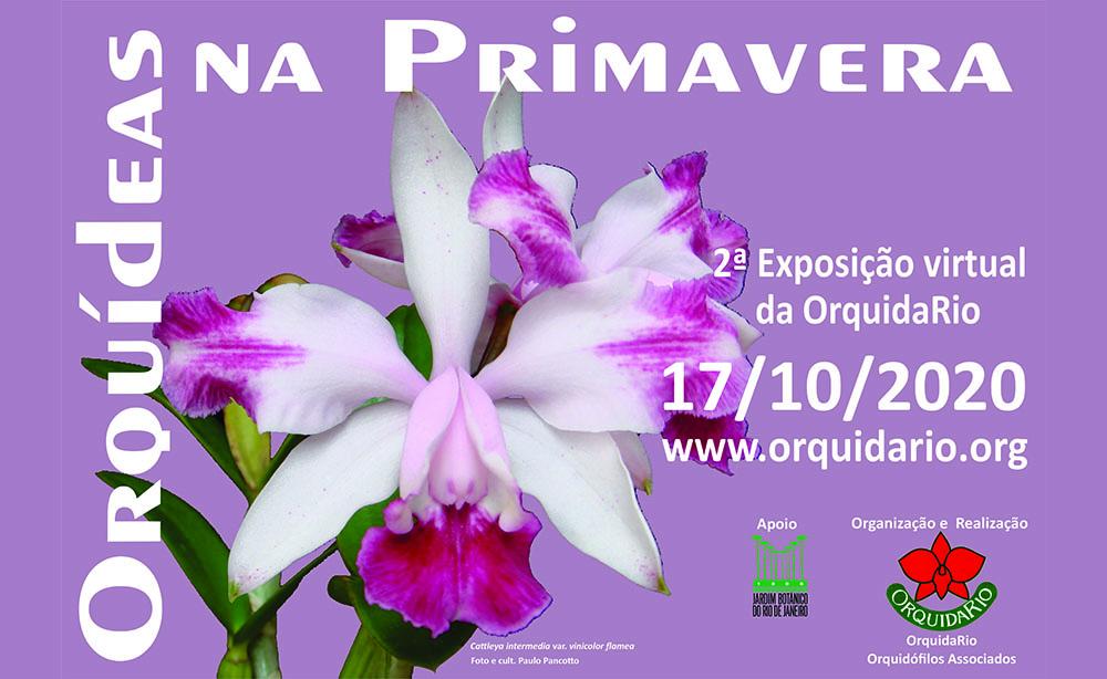 Exposição virtual Orquídeas na Primavera
