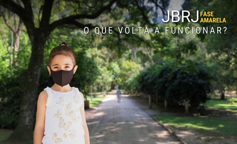 banner_volta_fase_amarela.jpg