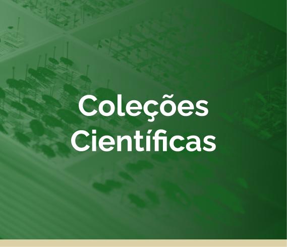 Coleções Científicas