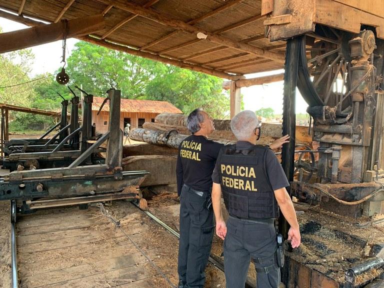 Eight sawmills dismantled in Nova Esperança do Piriá