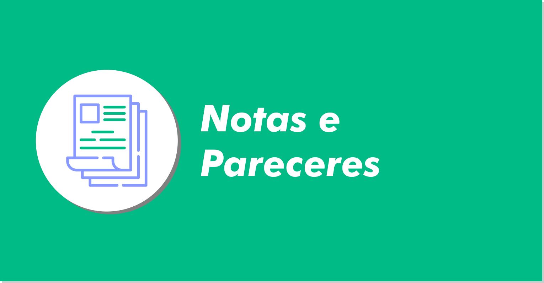 notas_pareceres.png