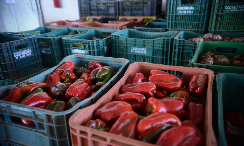 Serviço de logística tem desempenhado papel essencial para o abastecimento de produtos alimentícios