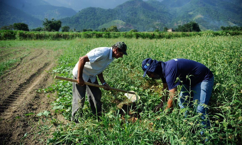 Aplicação do crédito rural ultrapassa R$ 271 bilhões na temporada 2020/2021