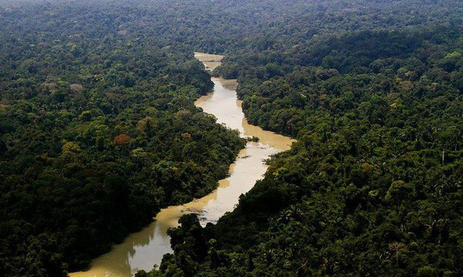 Avanços na agenda ambiental