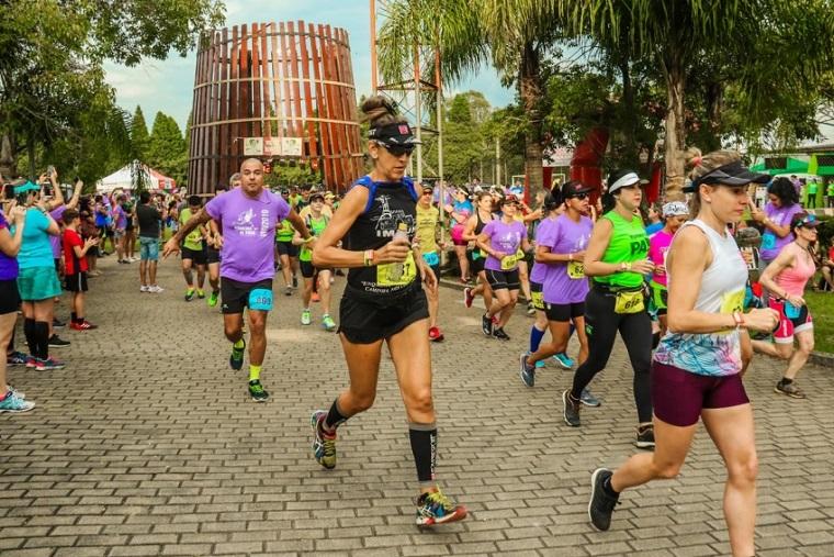 Última edição da maratona atraiu mais de 1.200 corredores aos vinhedos de Bento Gonçalves. Crédito: Divulgação