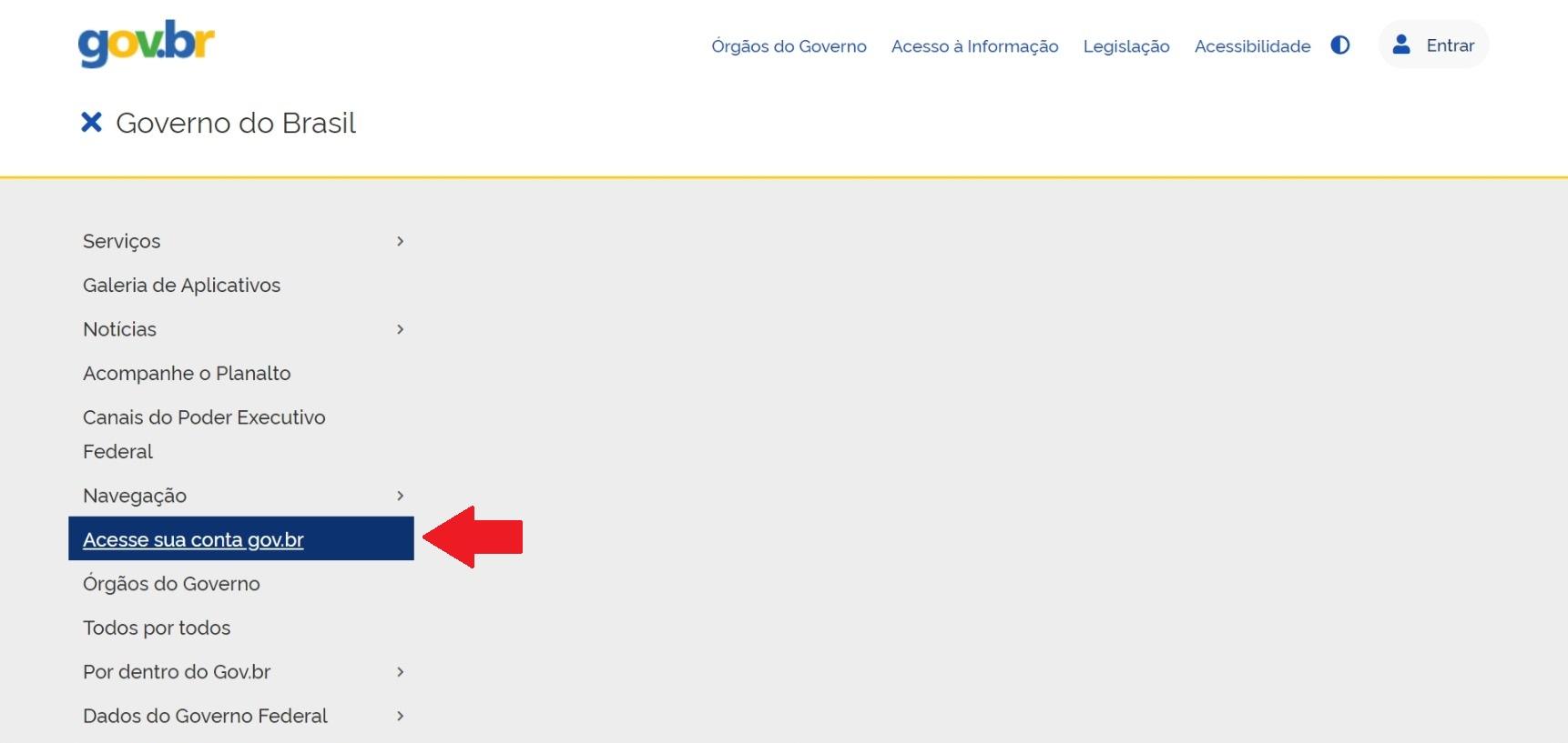 item acesse a sua conta gov.br