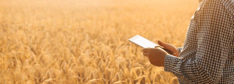 Receita Federal observa inconsistências nos preenchimentos do Livro Caixa Digital do Produtor Rural
