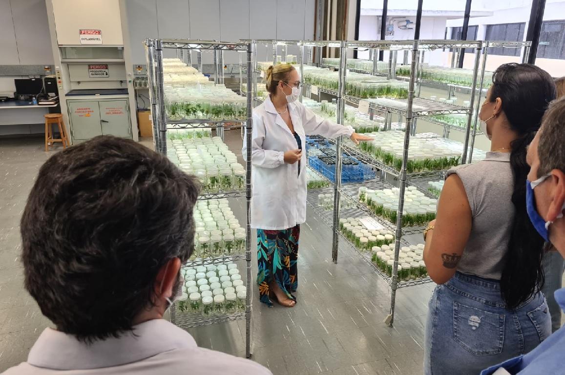 Empresa Amao Nutrition, que atua com produtos saudáveis, busca estreitar relação com o CBA para complementar toda linha de produtos nutracêuticos e naturais da marca.